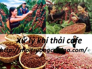 Xử lý khí thải sản xuất cafe