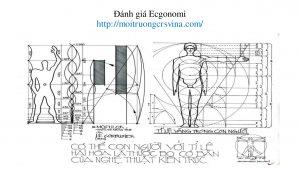 Đánh giá Ecgonomi môi trường lao động